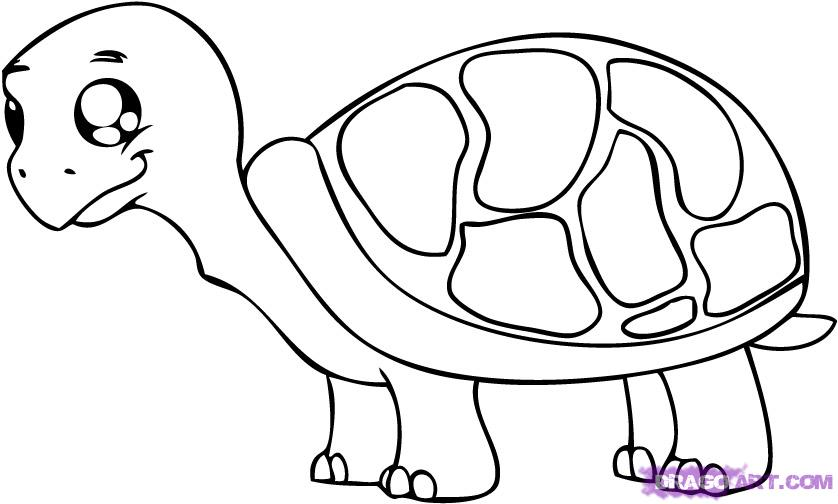 How to Draw a Cartoon Turtle, Step by Step, Cartoon Animals ...