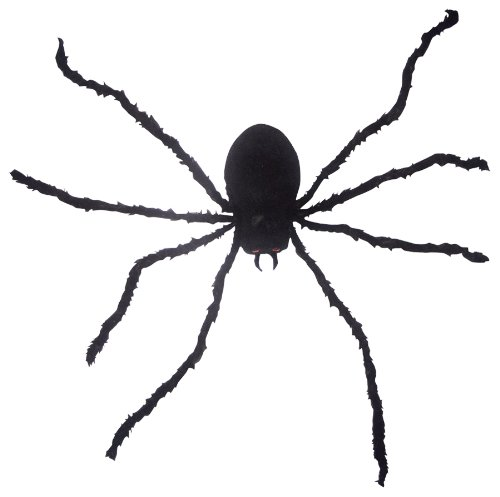 Make your own spider web clipart best clipart best for Animated spider halloween decoration