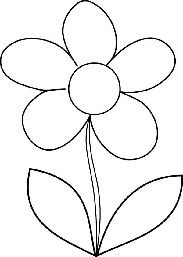 Coloring Page Of Flower Pot Clipart Best Simple Flower Pot Draw Color It