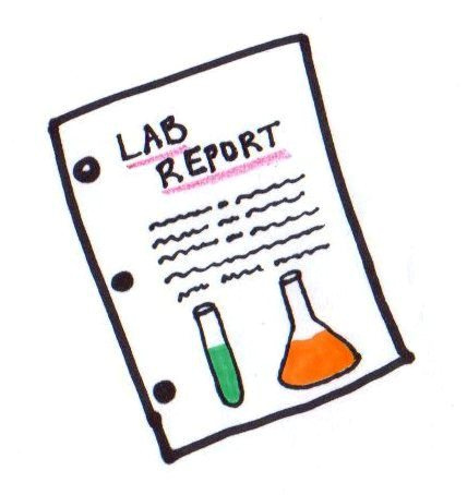 ochem lab report 2 Writing an organic chemistry lab report components of a laboratory notebook the following components should be contained for each experiment, along with any additional material required by your instructor title and date introduction (purpose, reaction) physical data (including calculations.