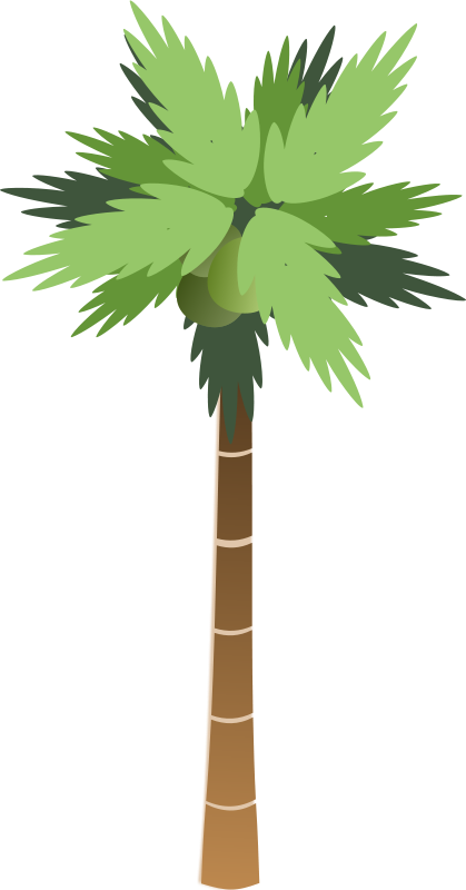 coconut tree logo png clipart best