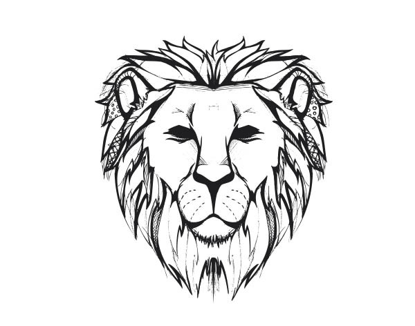 Lions face drawing - photo#3
