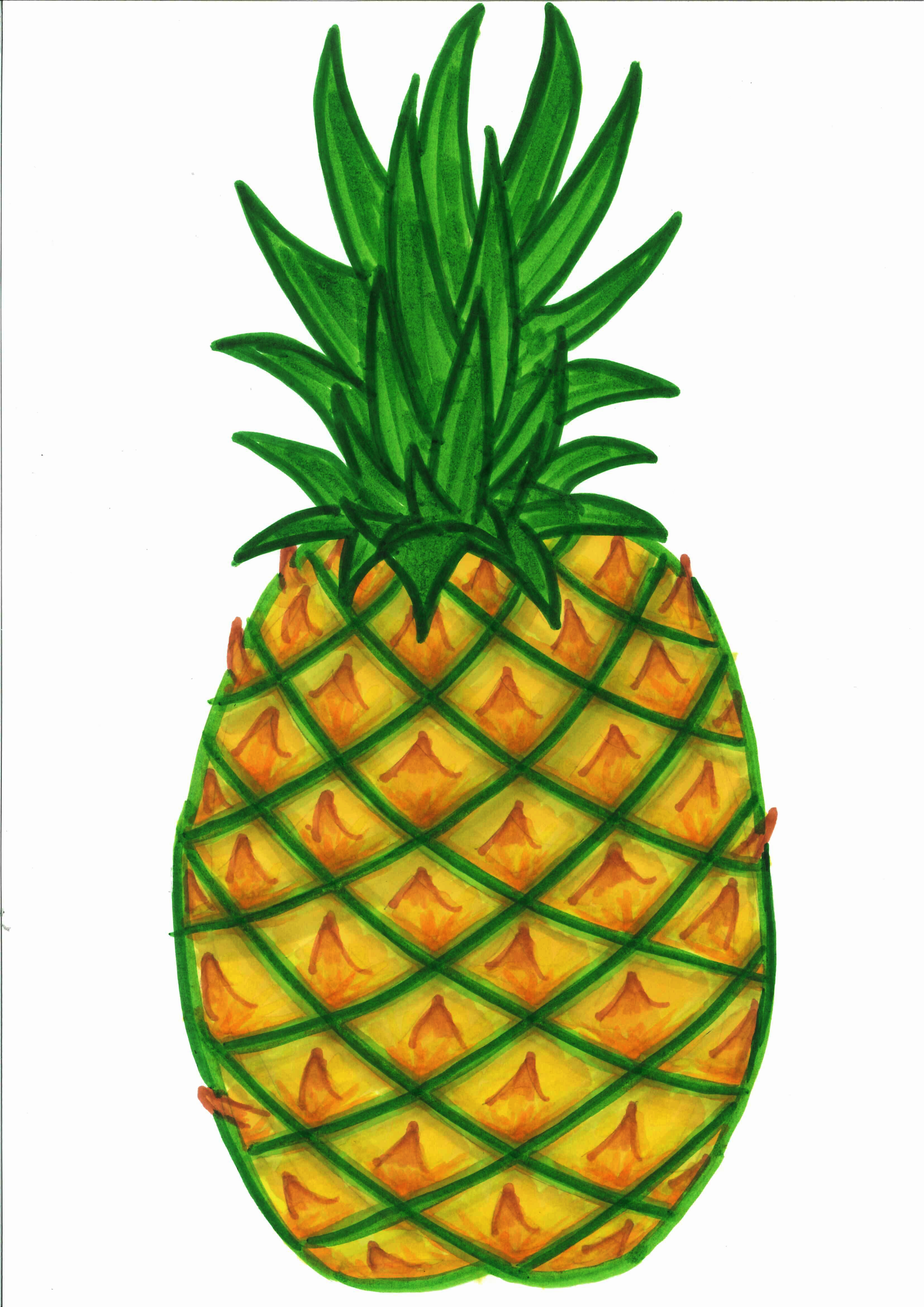 Clipart Of Pineapple - ClipArt Best - ClipArt Best