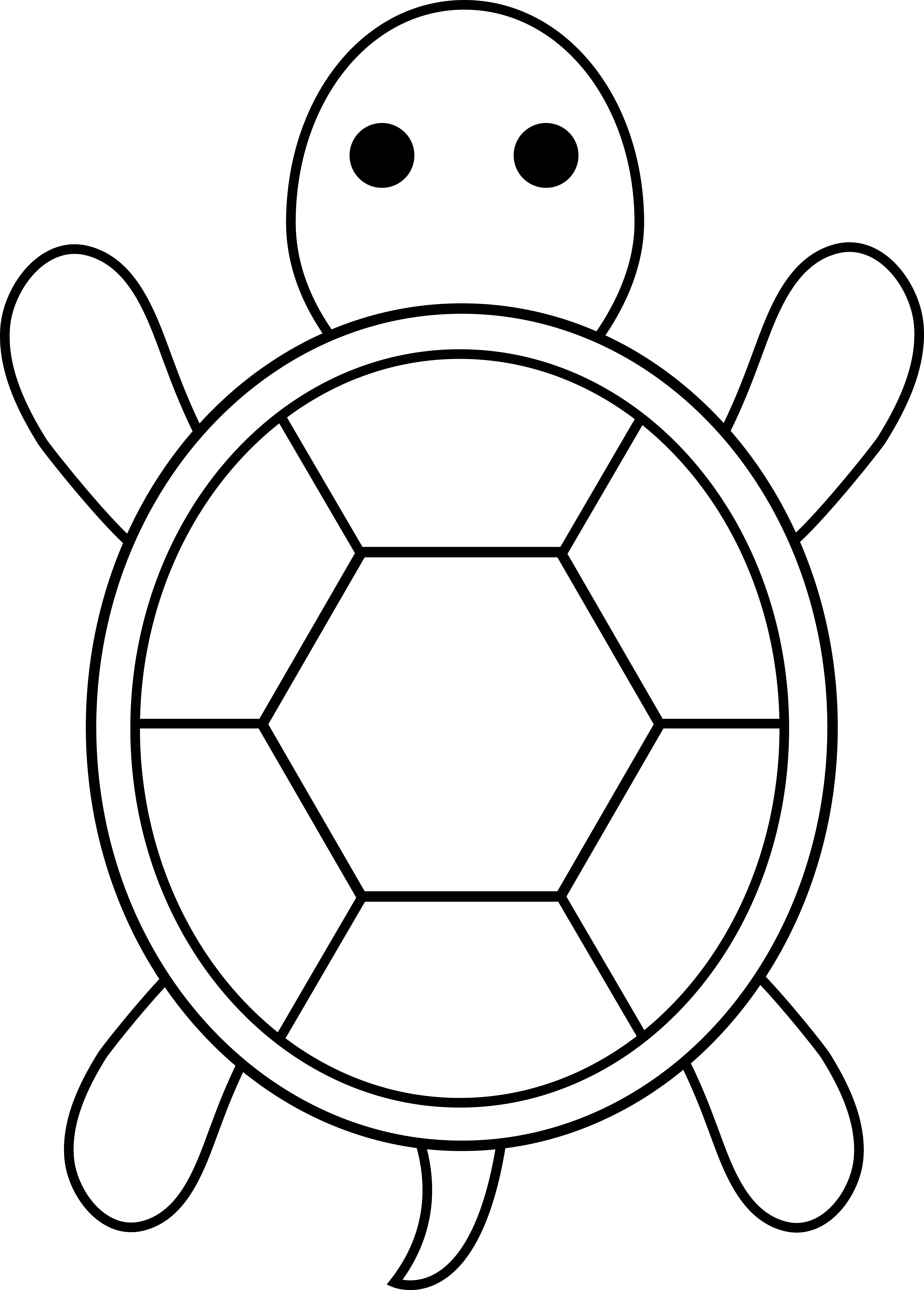 Turtle shell pattern clipart - ClipartFox