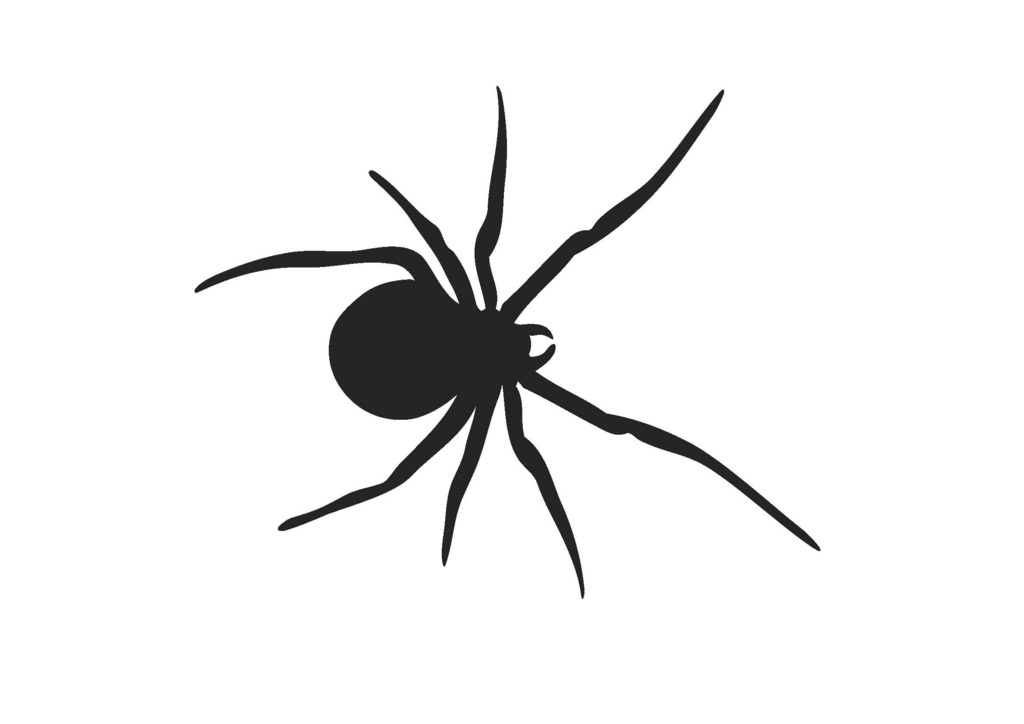 Spider silhouette png clipart best - Spider outline clip art ...