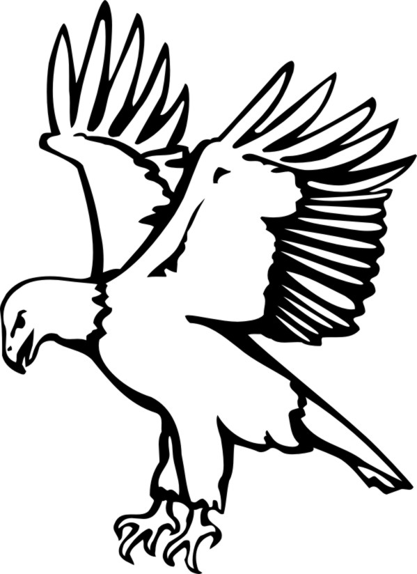 Eagle Coloring Clipart Best