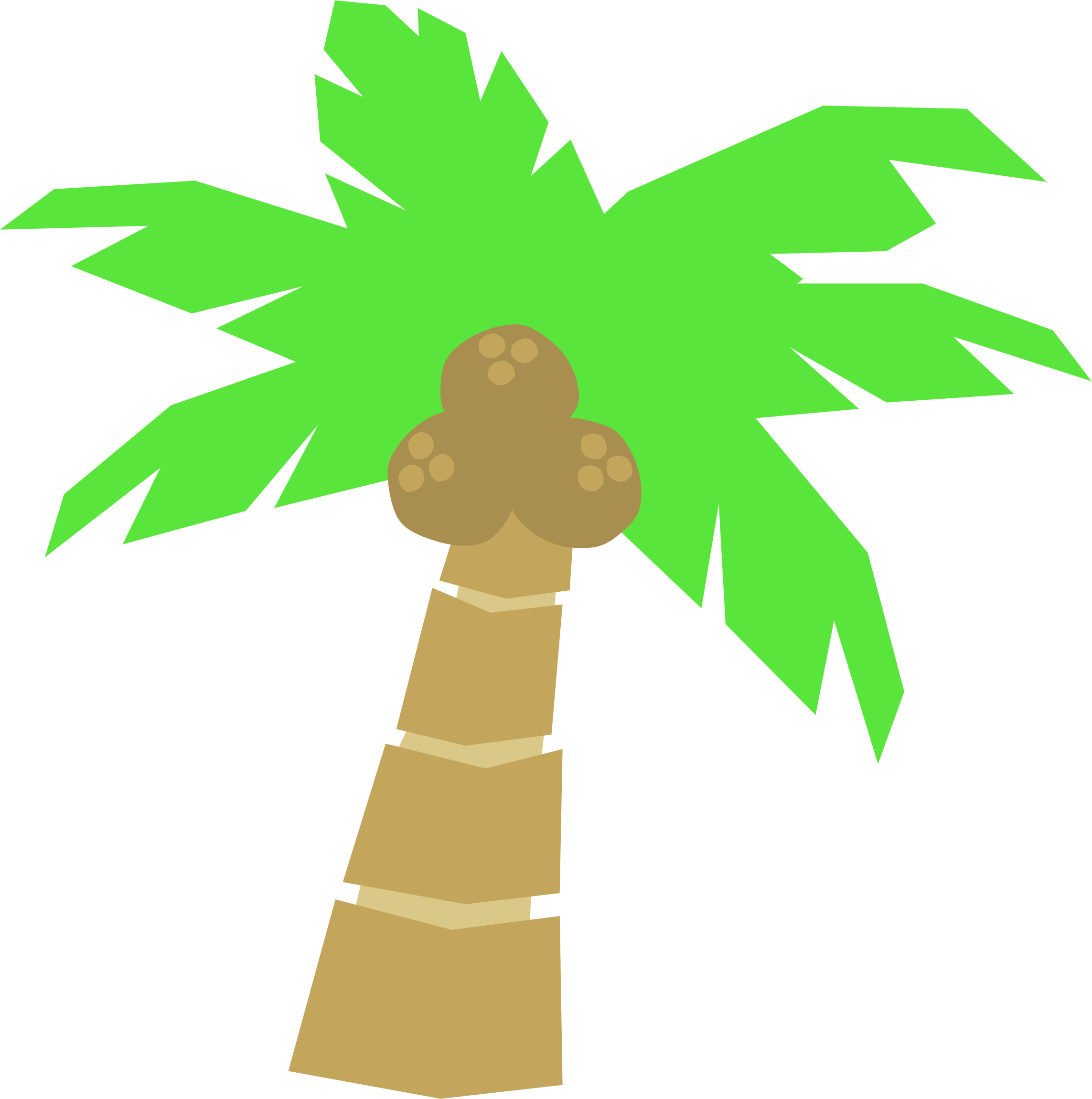 palm perfect
