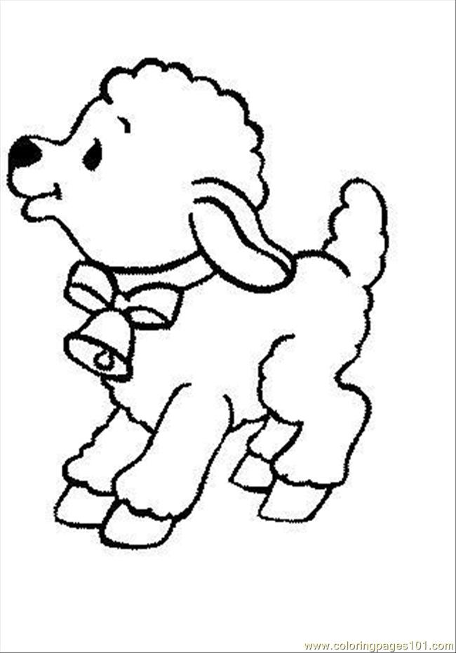 baby sheep coloring pages - photo#28