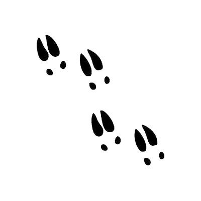 Cow footprint clipart