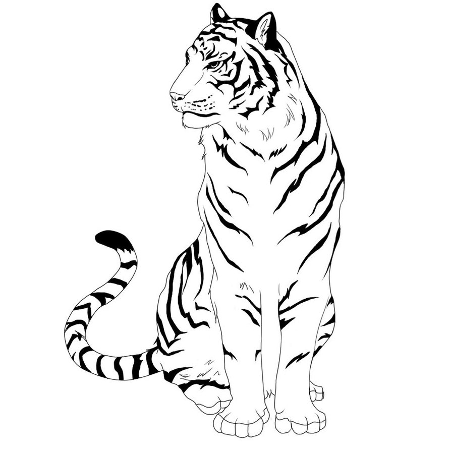Line Drawing Tiger : Nude line art clipart best