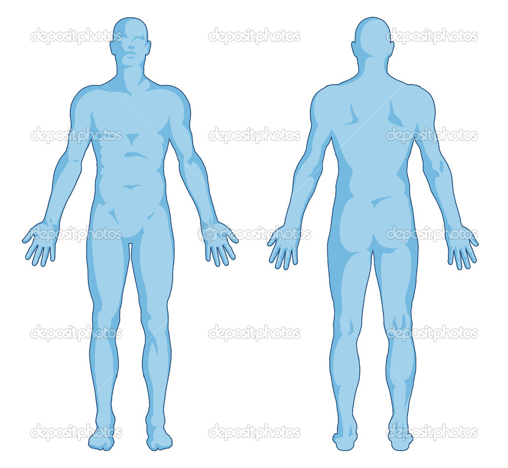 Human Body Sketch Front Back - ClipArt Best
