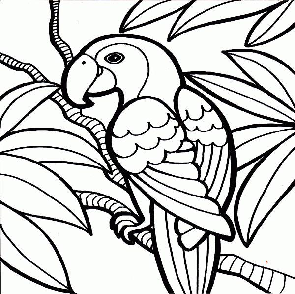 Cool Coloring Pages Clipart Best Cool Coloring Pages