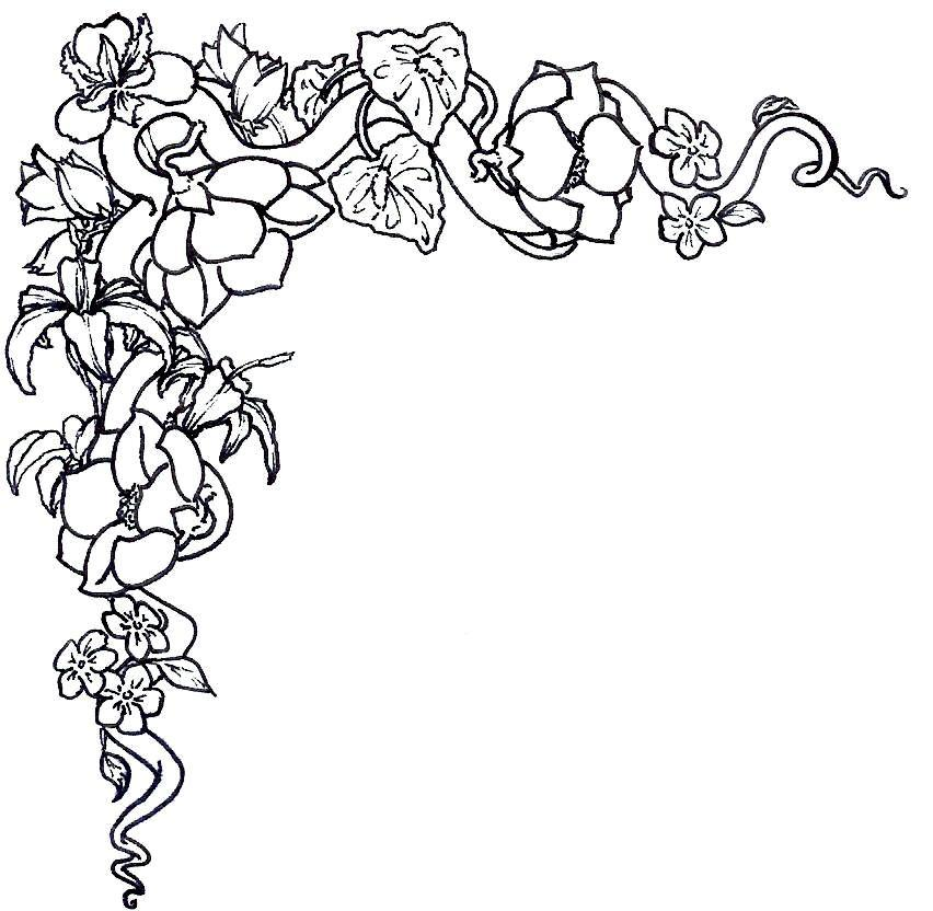 Line Art Flower Corner : Flower border black white clipart best