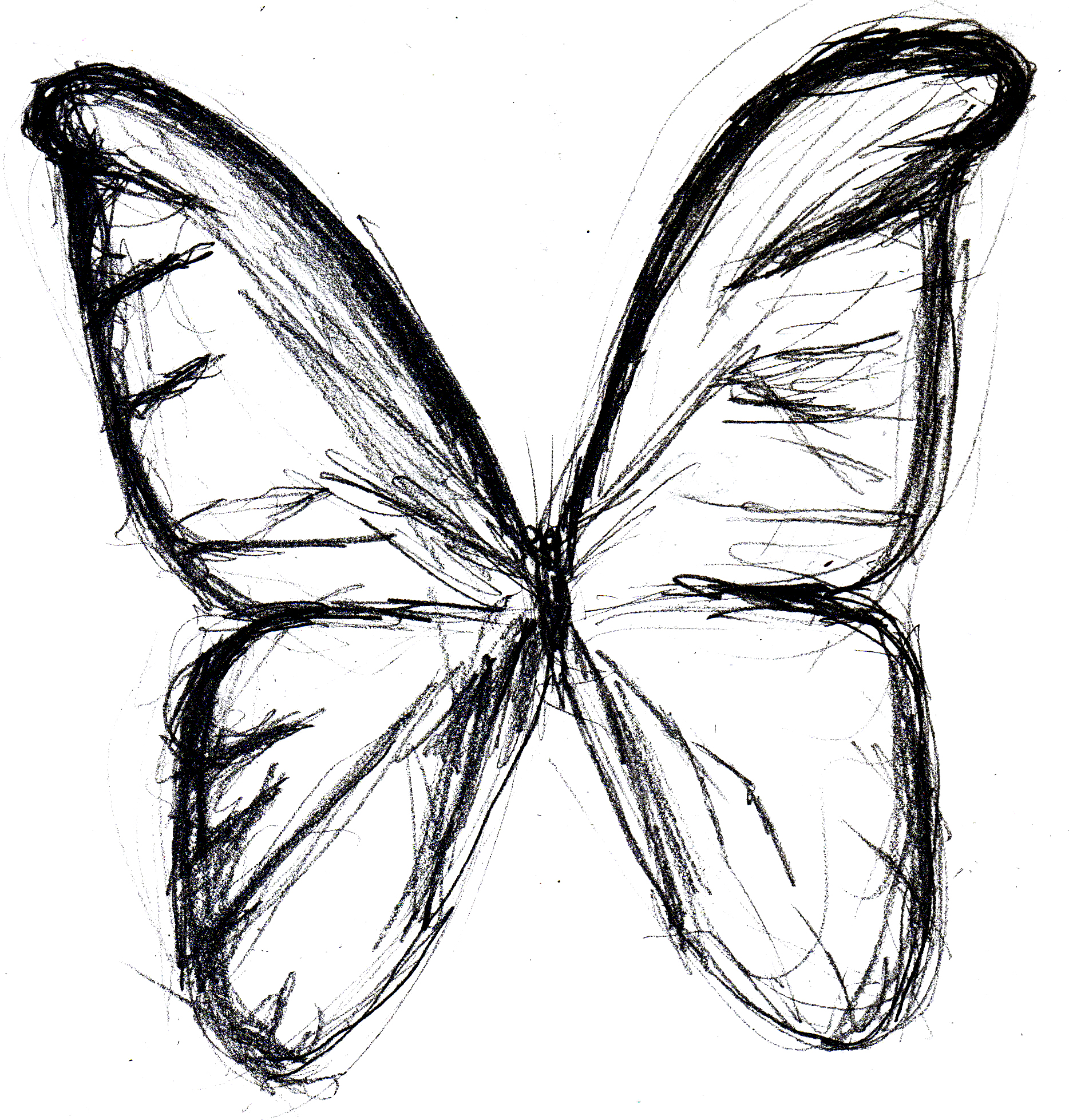 Butterfly Line Drawing Easy : Butterfly drawings in pencil clipart best