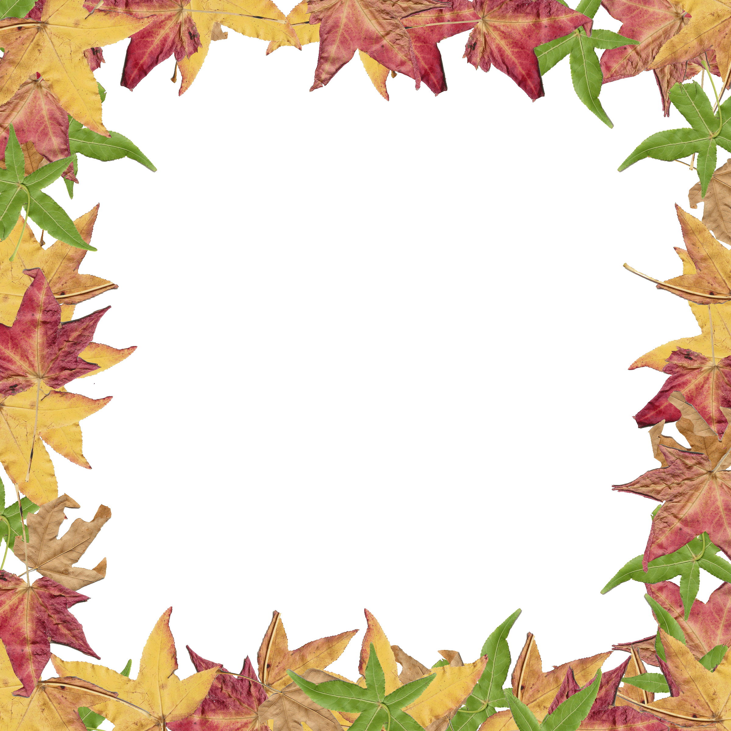 Fall Leaves Border Clipart - Free Clipart Images