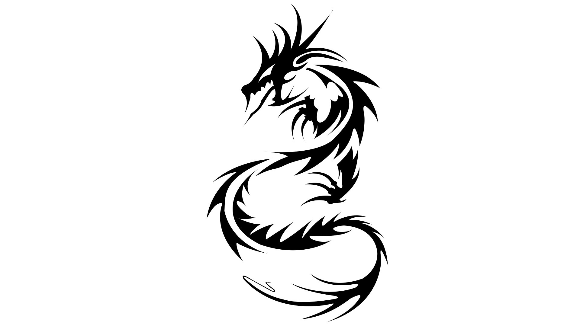 dragon drawings   clipart best