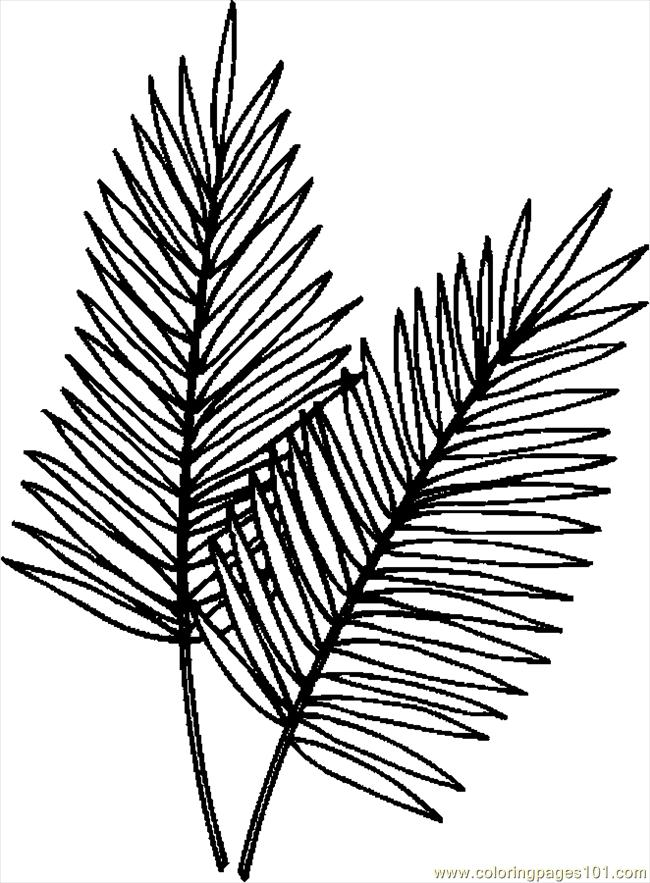 Palm Tree Leaves Template 718 Clipart Best Clipart Best