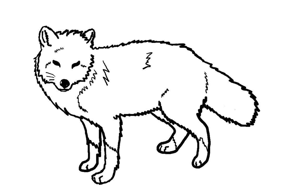 Line Art Drawings Of Animals : Line drawings of animals clipart best
