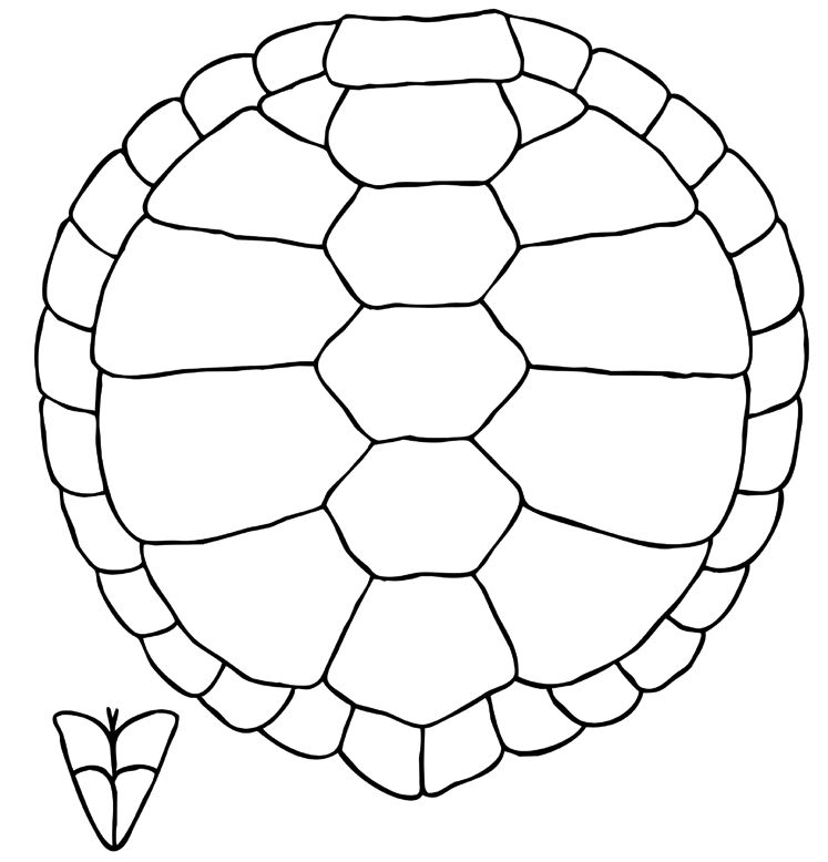 Turtle Shell Clip Art | Coloring Pages