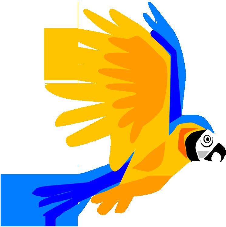 flying parrot clip art clipart best parrot clipart images parrot clip art transparent