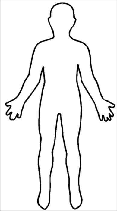 Line Drawing Human : Human body line drawing clipart best