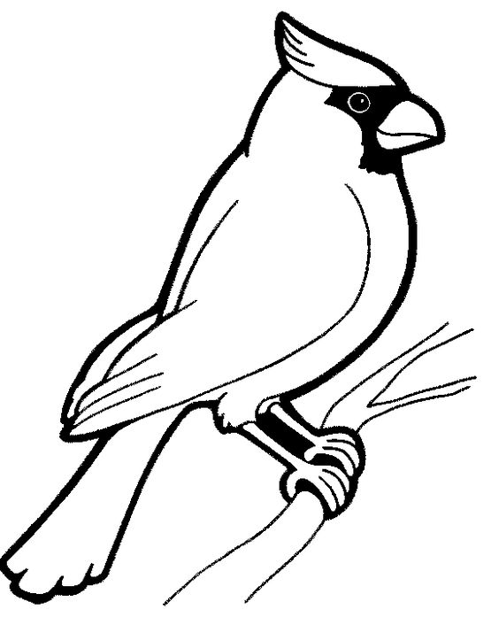 chickadee bird coloring pages - photo#20