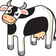 Cow images for kids