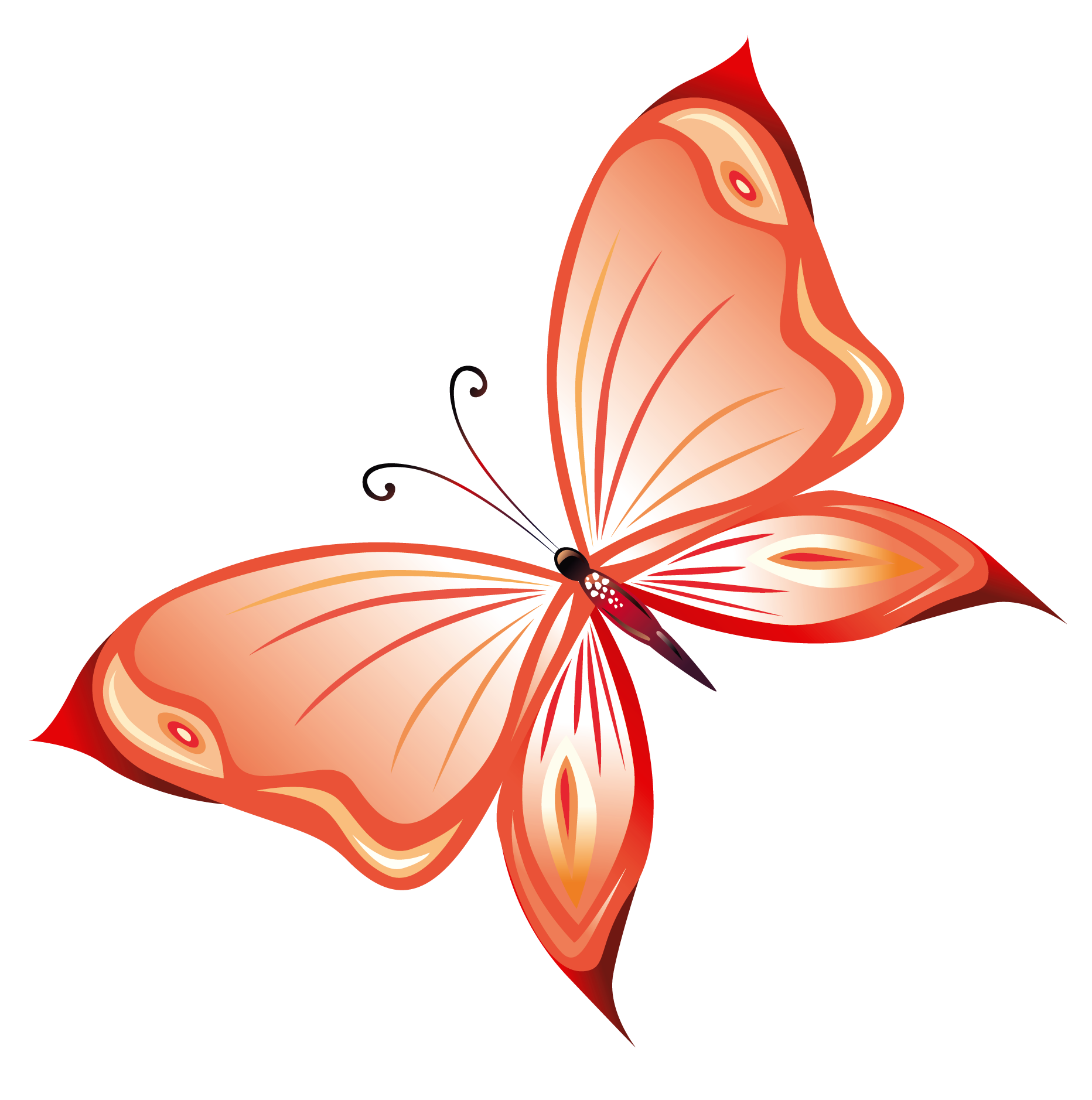 Red butterfly images clip art