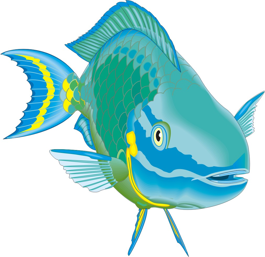 Cartoon Fish   Page 3 - ClipArt Best - ClipArt Best