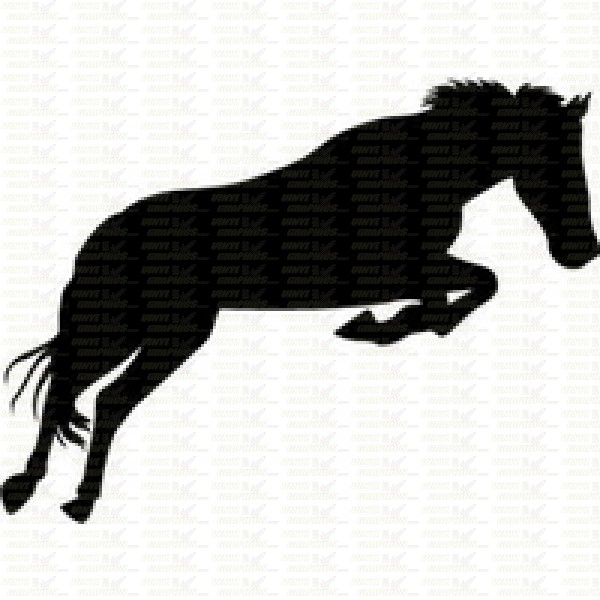 Horse Jumping S...