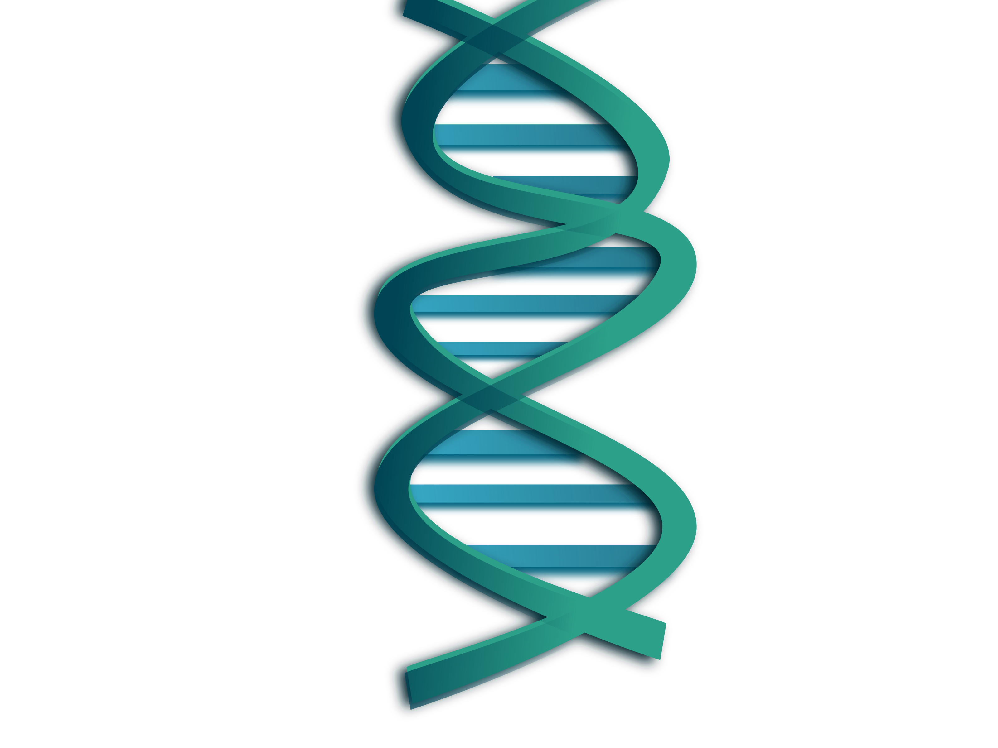 Helix Dna - ClipArt Best