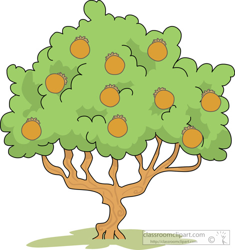 Cartoon Orange Tree - ClipArt Best