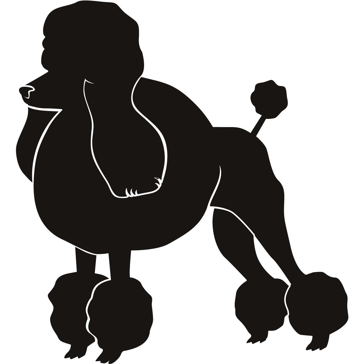 Black Dog Paris