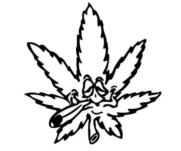 marijuana plant drawing clipart best