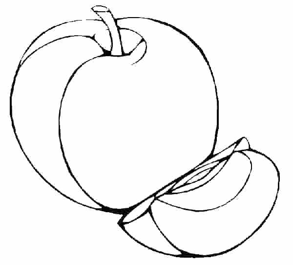 Line Art Of Apple : Apple line drawing clipart best