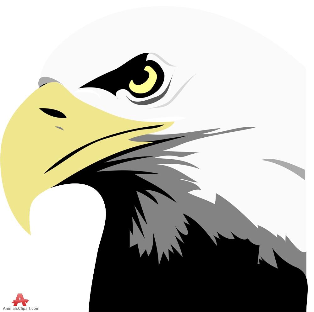 Clip Art Bald Eagle Clipart bald eagle clip art free clipart best design download