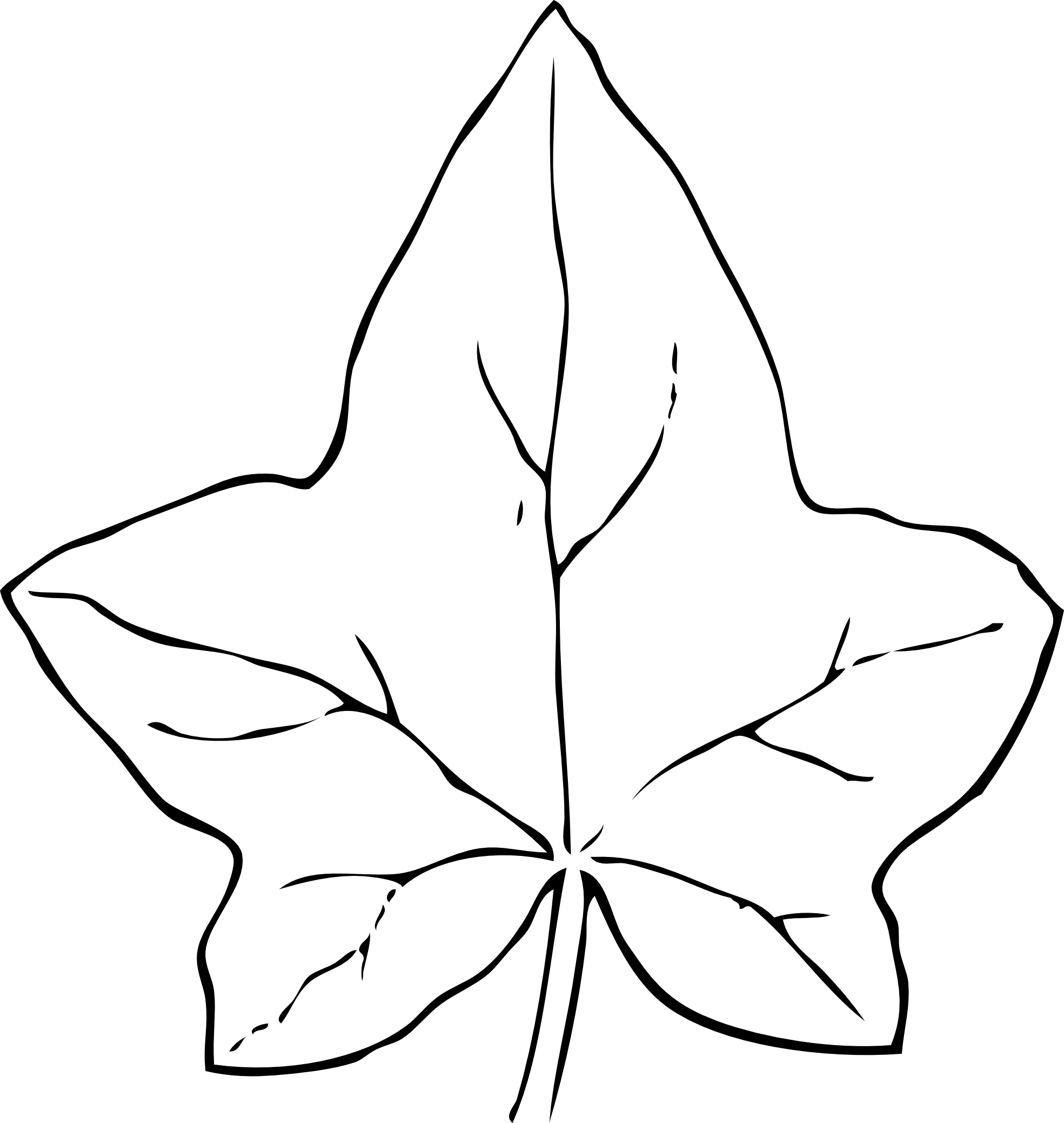 ivy leaf 2 black white line art coloring book ...