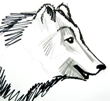 Free Coloring Pages Number 3 6656190 further Deer Silhouettes 11480708 besides Search further Cute Polar Bear 4383618 as well Decal Designs For Cars. on bear clip art