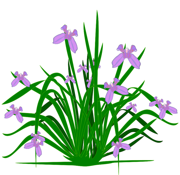 free clipart plants and flowers - photo #14