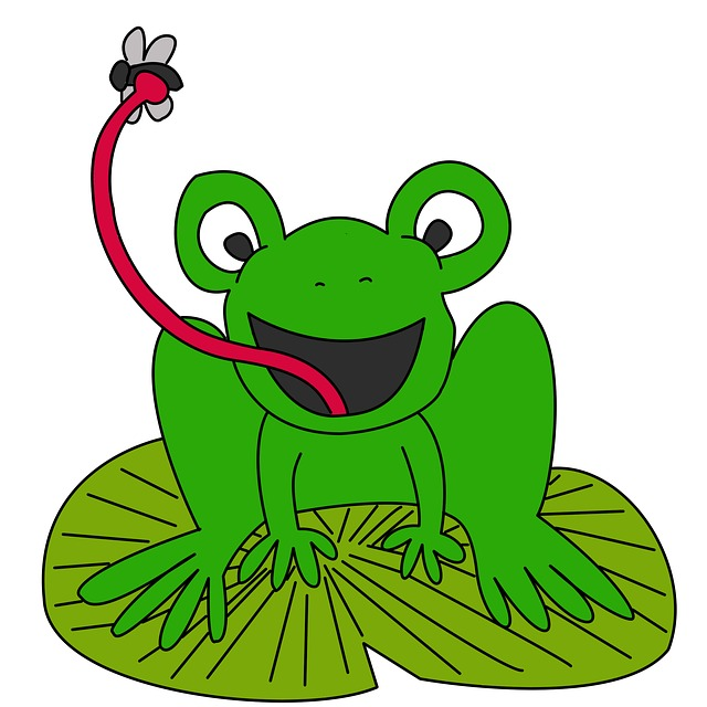 Cartoon Frog On Lily Pad