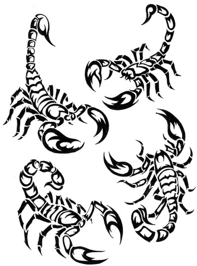 Coloring pages scorpion drawing sketch coloring page for Scorpion coloring page