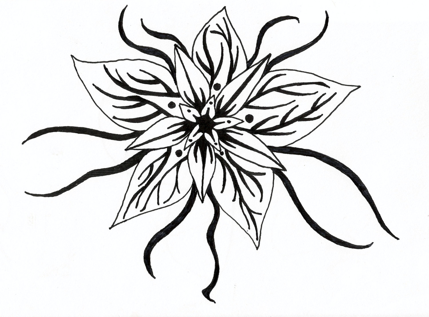 Flowers black and white drawing clipart best for Ink drawings easy