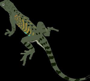 Iguana Images Clip Art