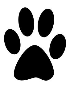 white panther paw