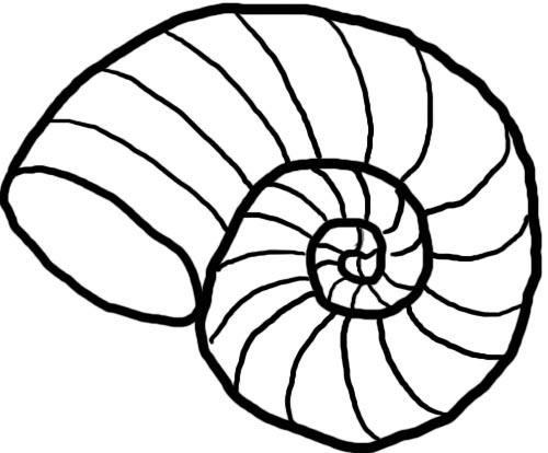 Spur Art Design Your Line : Shell line drawings clipart best