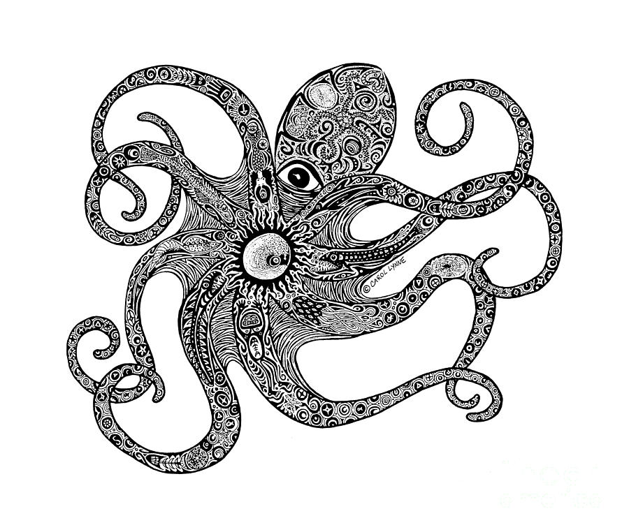 Free Octopus Drawings Octopus Outline