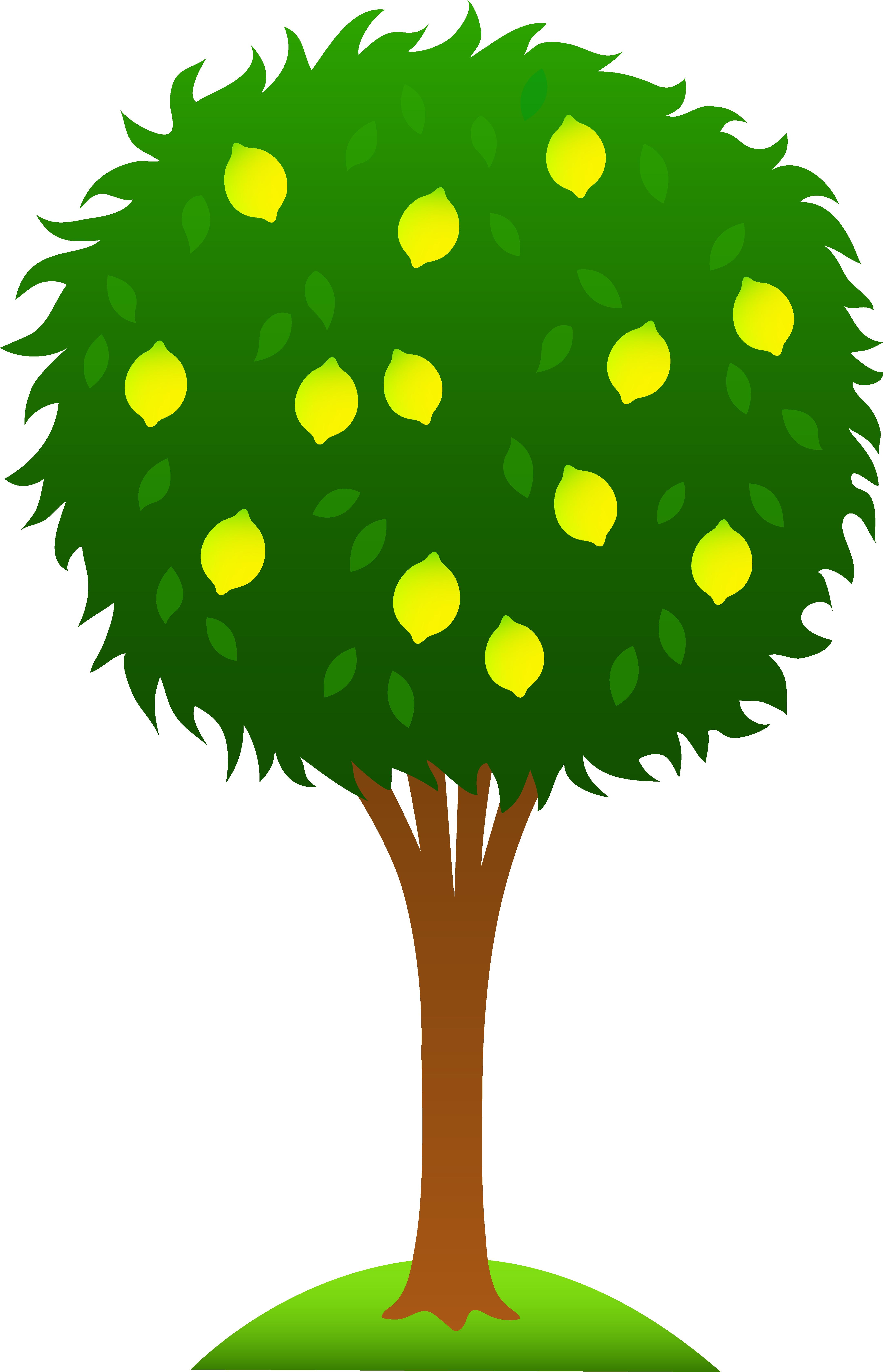 magic tree house pdf free download
