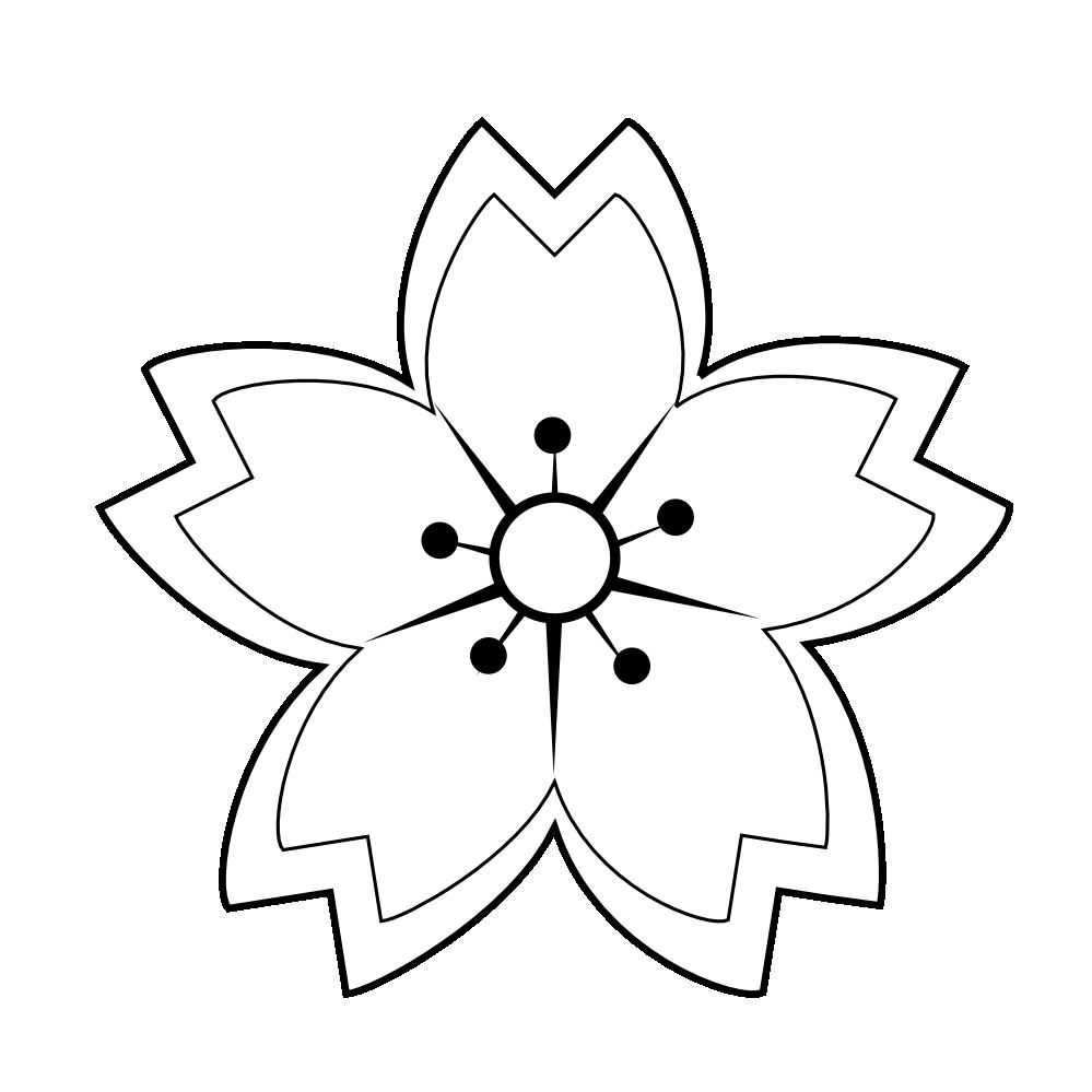 Line Art Information : Sakura flower clipart best