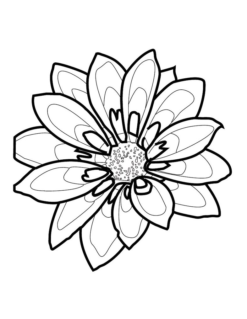 Line Drawing Flowers Blossom : Flower outline drawing clipart best