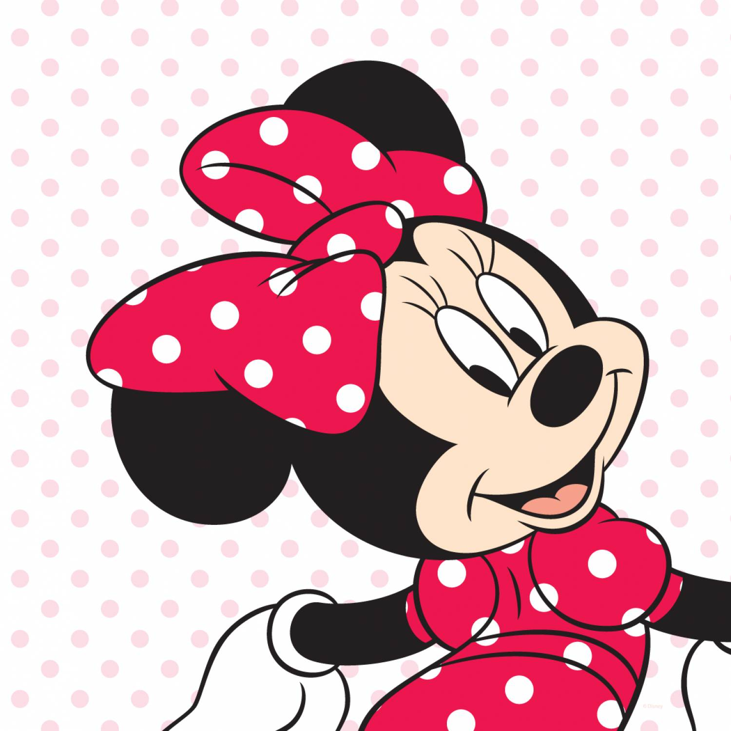 mickey and minnie mouse head clip art clipart best. Black Bedroom Furniture Sets. Home Design Ideas
